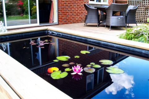 A small pond treated with Dyofix Pond Black for a dramatic affect