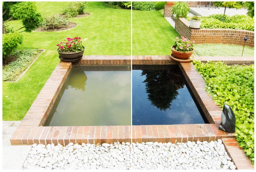 Managing Algae In Garden Ponds Start Algae Control In