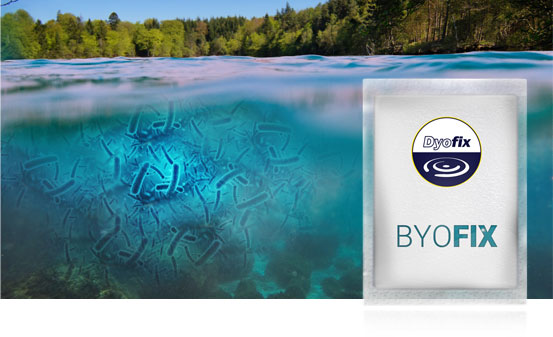 Byofix good bacteria for ponds and lakes